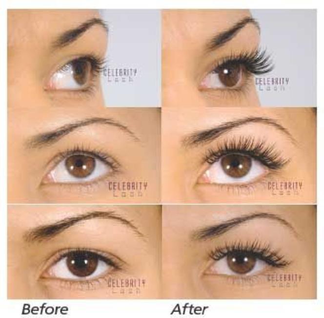 Studio 5 Luscious Lashes Trends In Eyelash Care