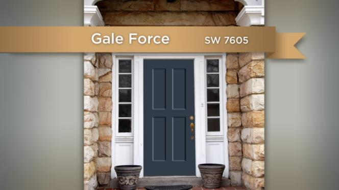 Color 1 Gale Force
