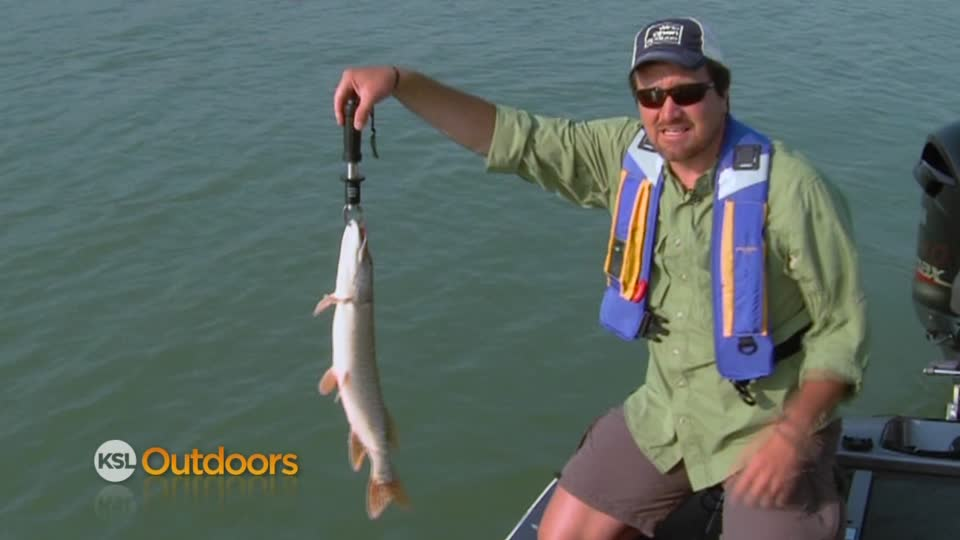 Ksl outdoors ksl outdoors yuba lake pike for Northern utah fishing report