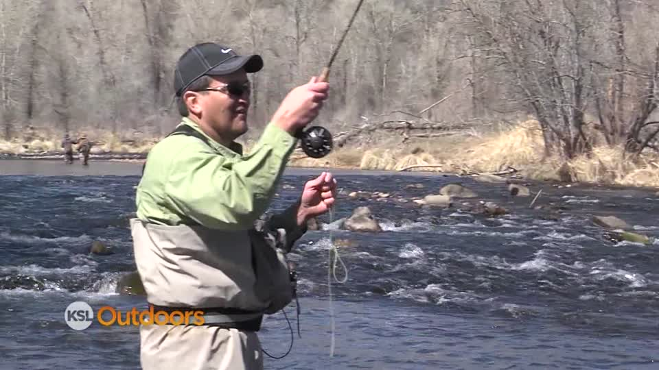 Ksl outdoors ksl outdoors fly fishing on provo river for Provo river fishing report