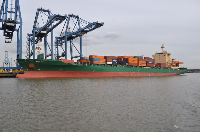 Dockworkers find 35 'screaming' stowaways in a container