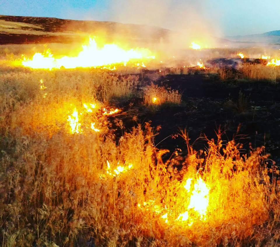 Multiple crews battling large wildfire in Box Elder County