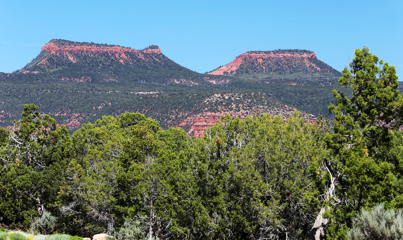 UtahPolicy.com poll shows Utahns don't want Bears Ears monument