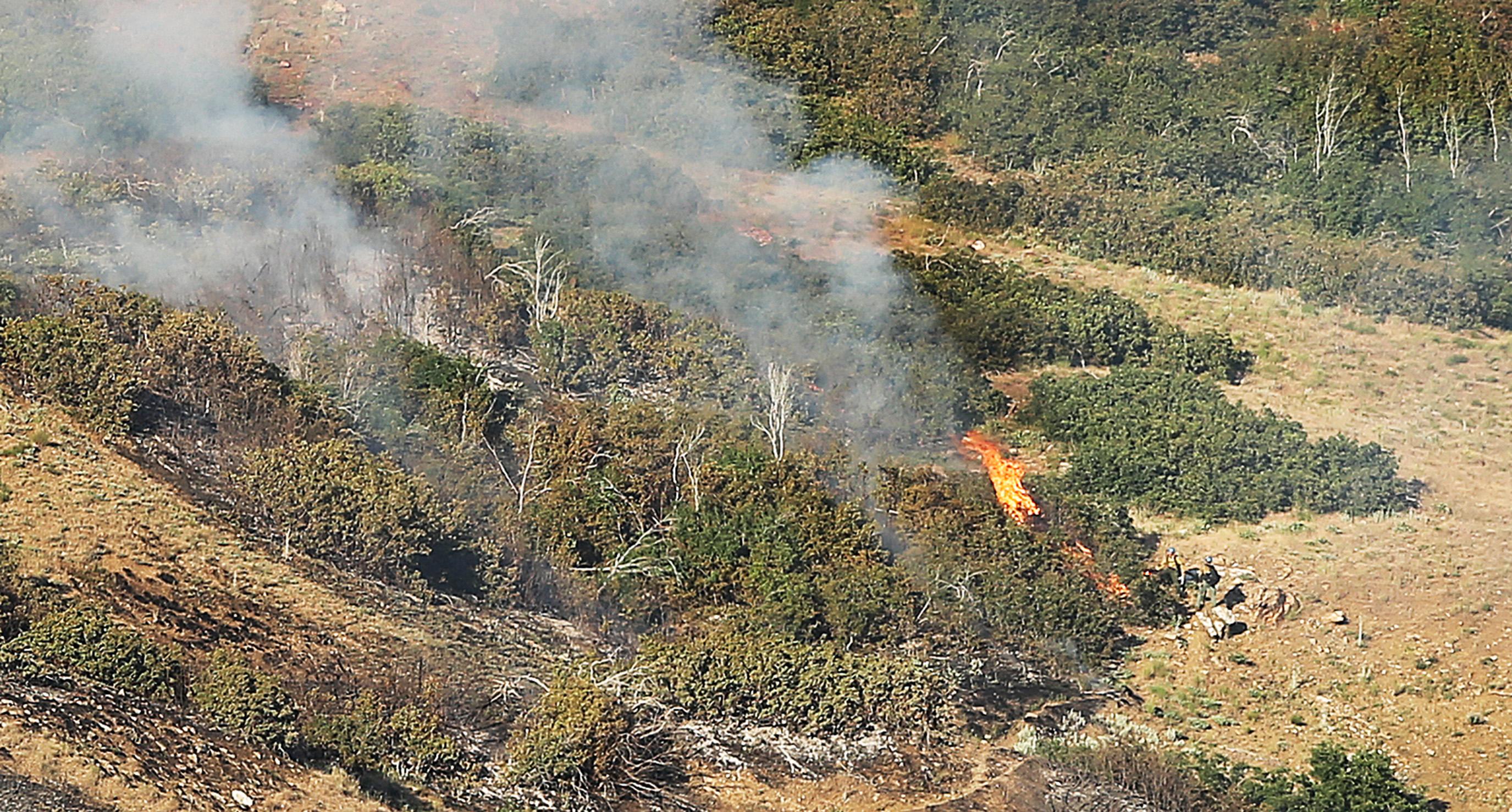 Brush fire burns 100 acres above Farmington