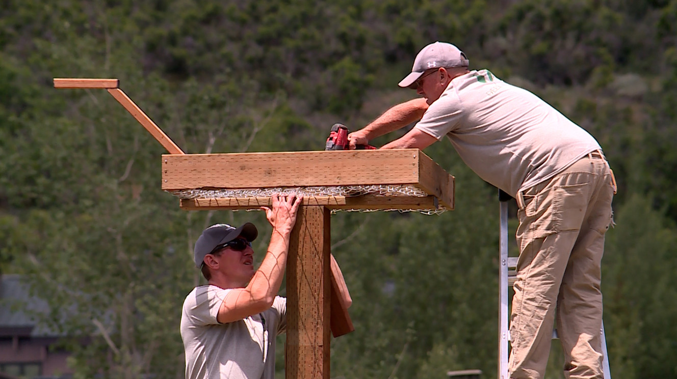 Scouts team up with ski resort to benefit birds