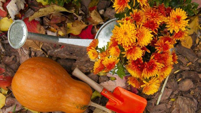 fall_gardening.jpg