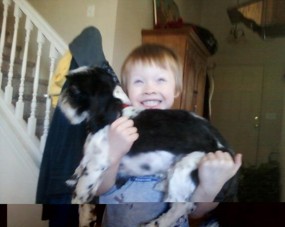 Hollys happy hounds dog grooming other animal services ksl local photos solutioingenieria Choice Image