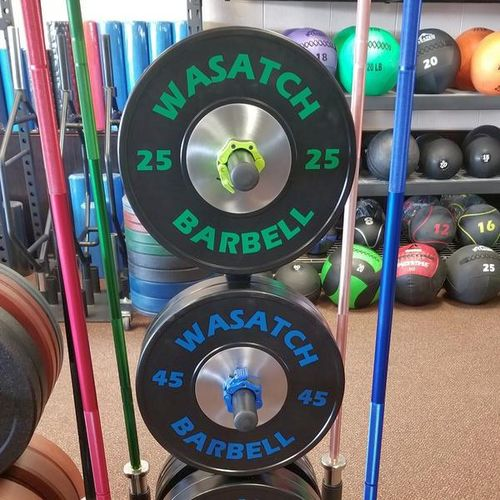 45 and 25LB Pair Competition Plate Special for sale in Midvale , UT