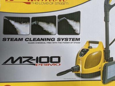 VAPamore Steam Cleaning System