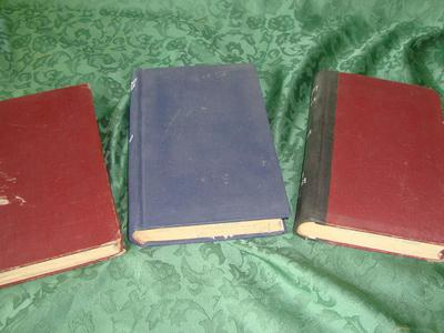 Antique Books Set Of 3- The History Of France 1887