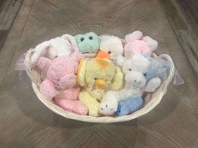 Basket Of Baby Animals! Please Read Details! for sale in South Jordan , UT