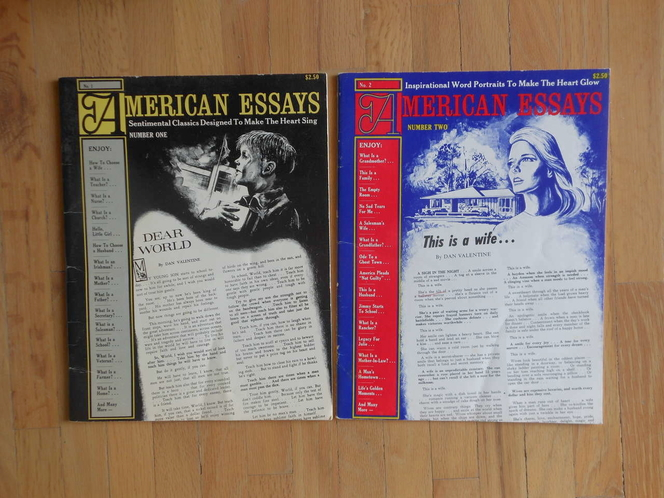 American Essays by Dan Valentine for sale in West Valley City , UT