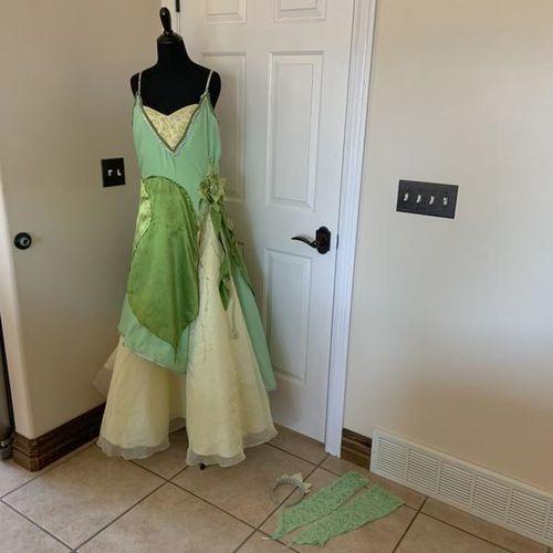 Adult Women's Tiana Costume  for sale in Herriman , UT