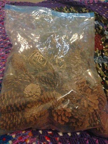 Pine cones for sale in South Ogden , UT