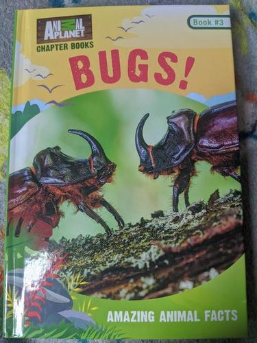 Bugs! book by James Buckley; Lori Stein; Animal Planet for sale in Saratoga Springs , UT