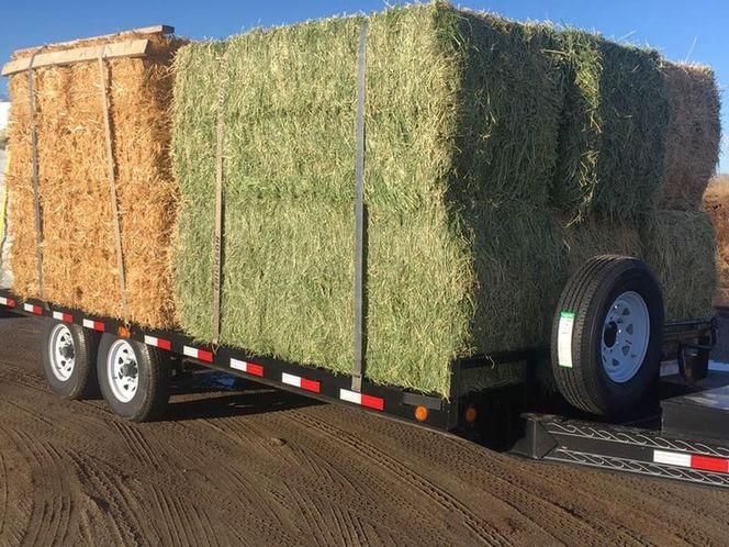 3x4x8 Alfalfa Hay for sale in West Bountiful , UT