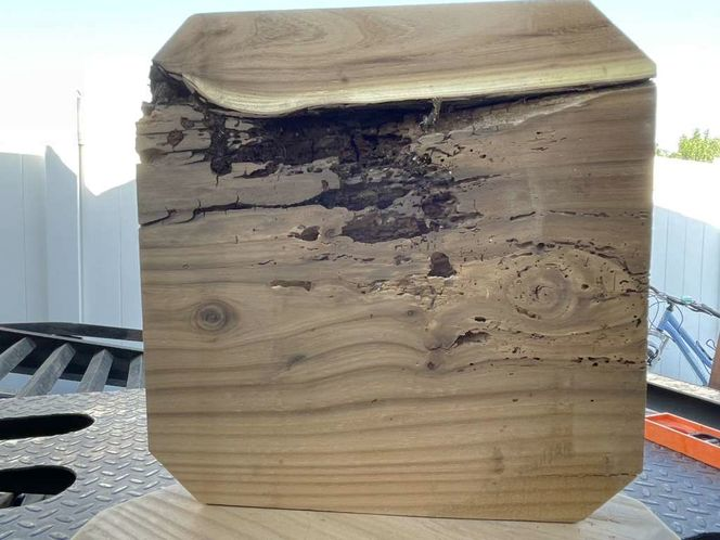 Wood Slabs for sale in Kearns , UT