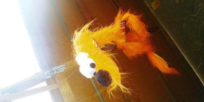 Puppet on a string for sale in Blackfoot , ID