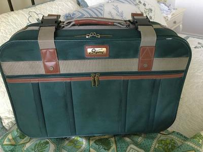Skyway carry on bag