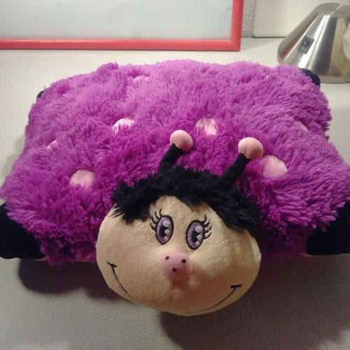 Almost new ladybug pillow pet.  for sale in Provo , UT