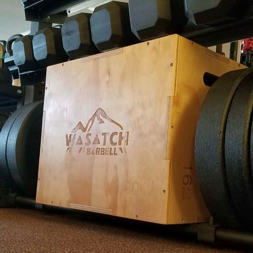 Wasatch Pro Plyometric Box 16x20x24 *wpb* for sale in Midvale , UT