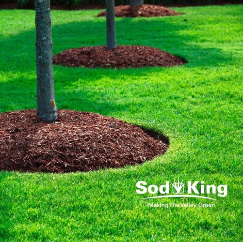 🥇MULCH - High Quality Mulch Delivered for sale in Salt Lake City , UT
