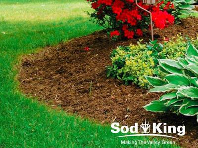 🥇MULCH - High Quality Colored Mulch