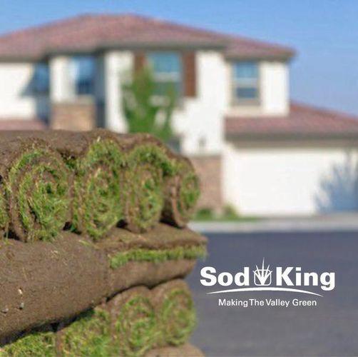 🥇SOD - KING BLUE™️ - Kentucky Bluegrass Sod for sale in Salt Lake City , UT