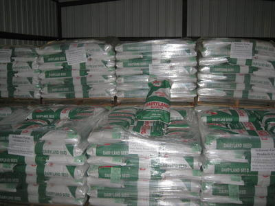 Dairyland Alfalfa Seed at the discount