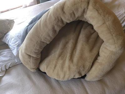 pet bed/pet cave really warm and cosy for your pet