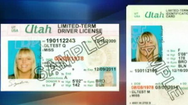 drivers license for illegal immigrants Granting driver's licenses to undocumented floridians allows them to live openly and accountably in society their increased legal responsibility.