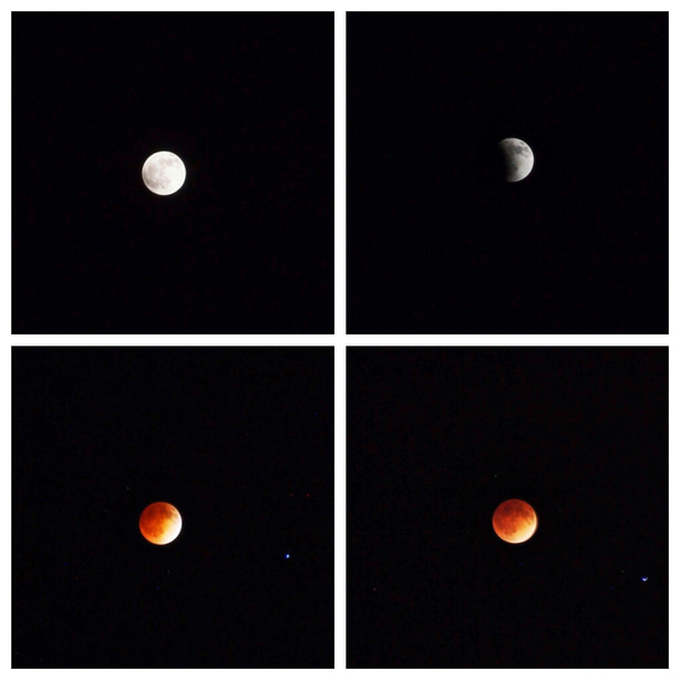Blood Moon Sky Gazers Mesmerized As Red Hue Lights Up