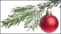Where to cut a Christmas tree in Utah | KSL.com