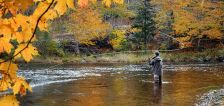 Casting passion: What is fly-fishing's allure?