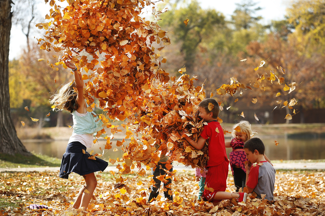 Image result for fall weather