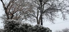 User submitted: Photos show snow falling quickly across Wasatch Front