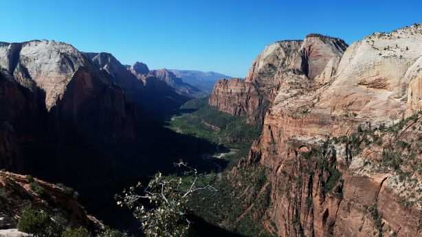 Hiker who died after falling from Zion National Park trail identified as park employee