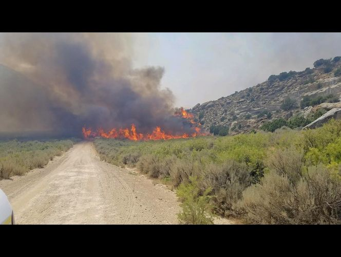 Wildfire updates: Tollgate Canyon Fire in Summit County caused by vehicle, officials say