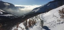 Pics of the Week: Inversion and mountain snow