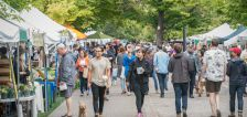 8 local can't-miss events happening this summer