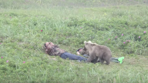 Have You Seen This? A 'beary' upsetting wake-up call