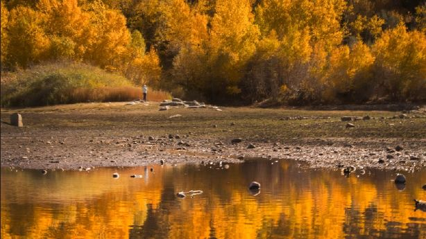 Looking forward to Utah's fall colors? Here's what to expect this year
