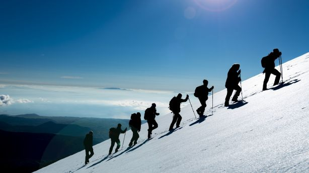 Find a Sherpa, be a Sherpa: How to rise above your own adversities