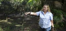 A volunteer was attacked by a tiger at Carole Baskin's Big Cat Rescue