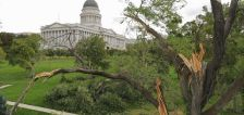 One year after devastating Utah windstorm, Salt Lake City mayor urges preparedness