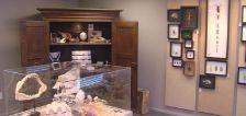 Utah businessman pleads guilty to violations of wildlife, endangered species acts