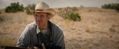 Review: Dull Liam Neeson thriller 'The Marksman' misses its target