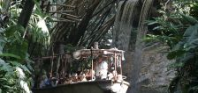 Disneyland to reimagine Jungle Cruise ride following years of criticism