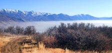 5 ways businesses can help reduce Utah's horrible air pollution