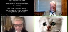 You got to be kitten me: Texas lawyer accidentally presents case with Zoom kitten filter on